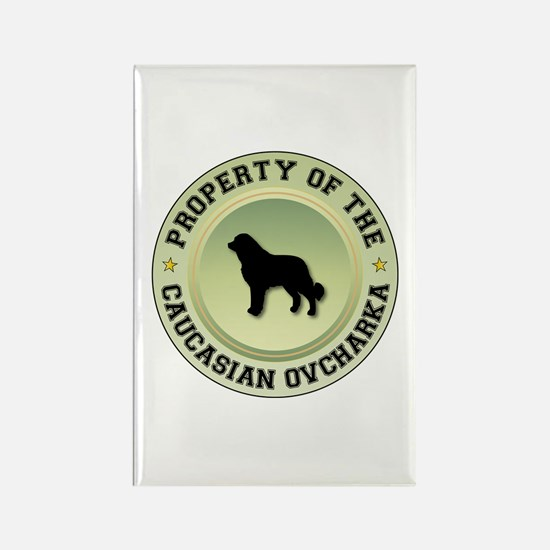 Caucasian Property Rectangle Magnet (10 pack)