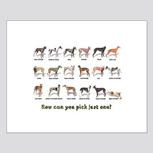 Greyhound Colors Small Poster