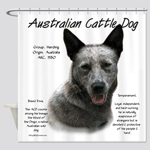 Cattle Dog (blue) Shower Curtain
