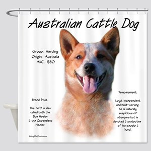 Cattle Dog (red) Shower Curtain