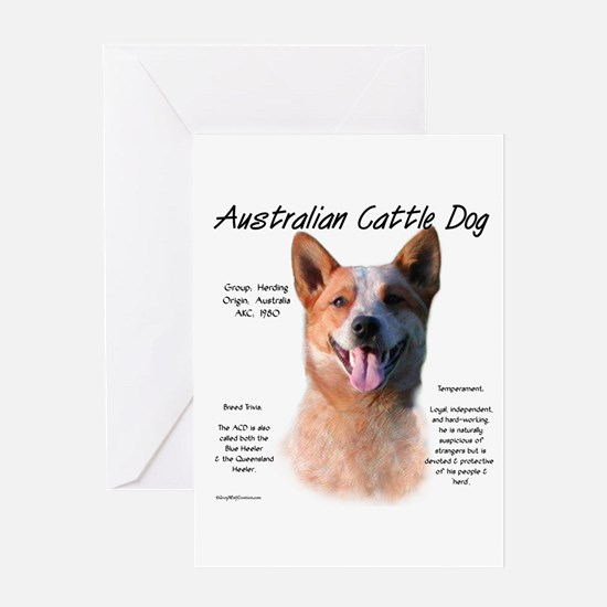 Cattle Dog (red) Greeting Card