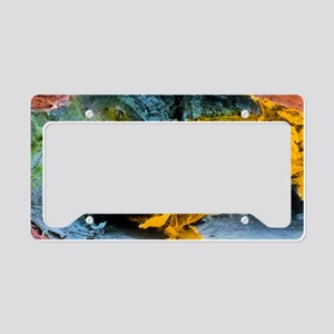 Colour SEM of atherosclerosis License Plate Holder
