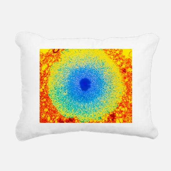 Coloured TEM of a Lewy b Rectangular Canvas Pillow