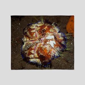 Parasitic marine snails Throw Blanket