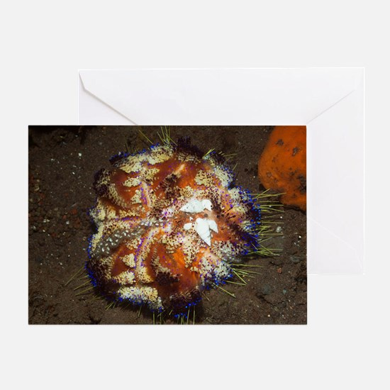 Parasitic marine snails Greeting Card