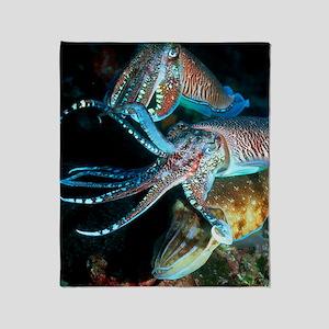 Pharaoh cuttlefish Throw Blanket