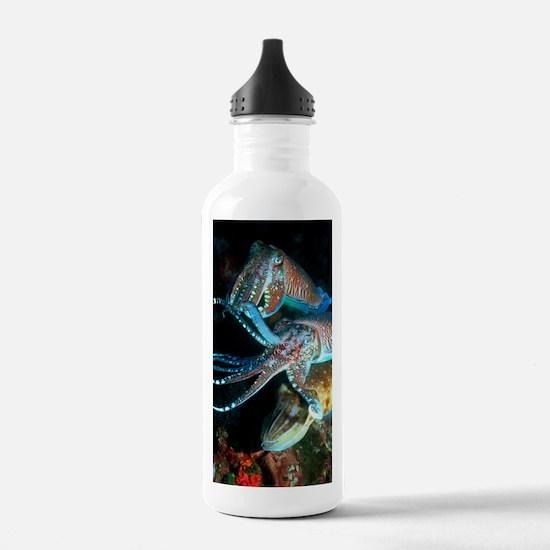 Pharaoh cuttlefish Water Bottle