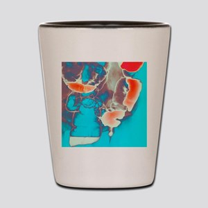 Coloured barium X-ray of an inguinal he Shot Glass