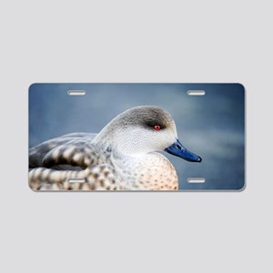 Patagonian crested duck dra Aluminum License Plate