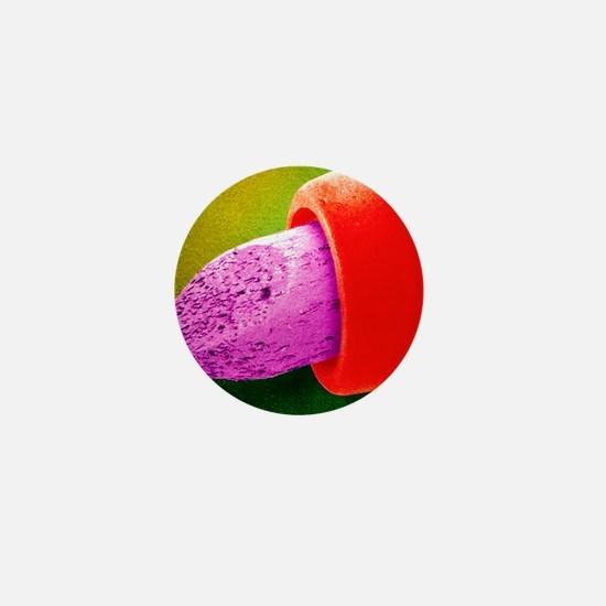 Coloured SEM of nib of a felt-tip pen Mini Button