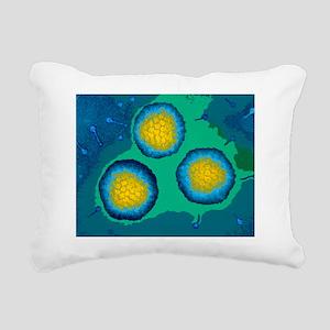 Coloured TEM of three ad Rectangular Canvas Pillow