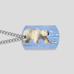 Polar bear Dog Tags