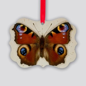 Pinned specimen of peacock butter Picture Ornament
