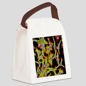Cultured HeLa cells, light microg Canvas Lunch Bag