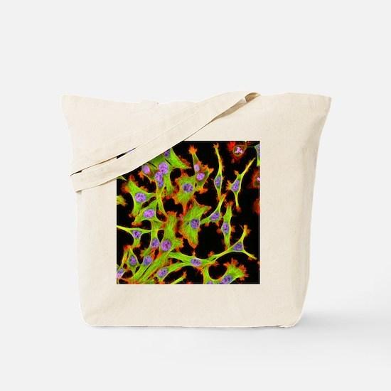 Cultured HeLa cells, light micrograph Tote Bag