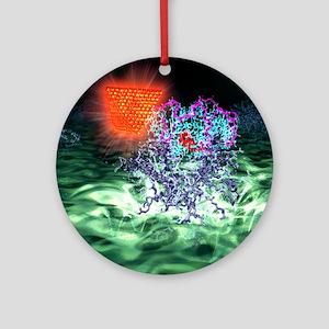 Quantum dot probe, artwork Round Ornament