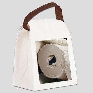 Polar bear insulating hair, SEM Canvas Lunch Bag
