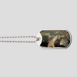 Prairie dog Dog Tags