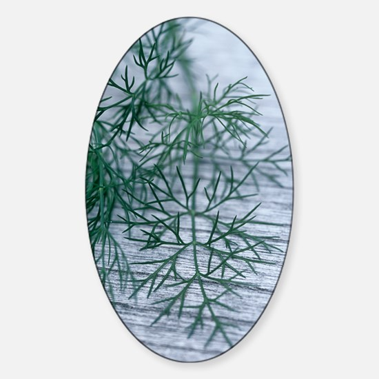 Dill leaves Sticker (Oval)