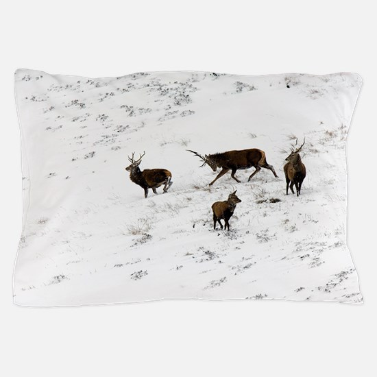 Red deer stags Pillow Case
