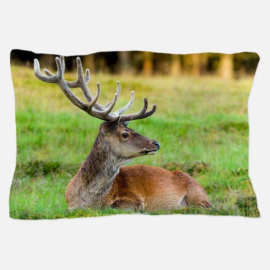 Red deer stag Pillow Case