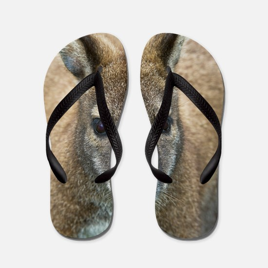 Red-necked wallaby Flip Flops