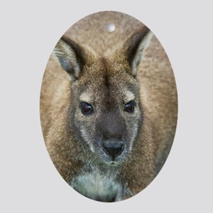 Red-necked wallaby Oval Ornament