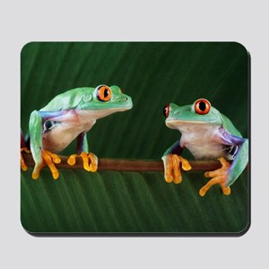Red-eyed tree frogs Mousepad