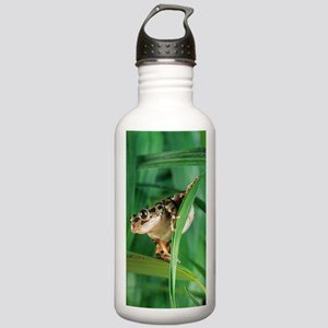Red-legged pan frog Stainless Water Bottle 1.0L