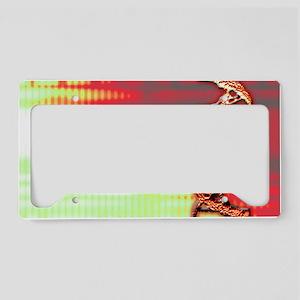 DNA helix License Plate Holder