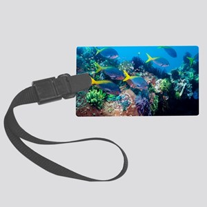 Redbelly yellowtail fusiliers Large Luggage Tag