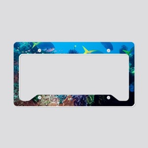 Redbelly yellowtail fusiliers License Plate Holder