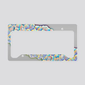 DNA molecular surface License Plate Holder