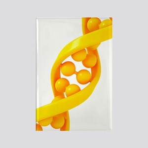 DNA molecule, artwork Rectangle Magnet