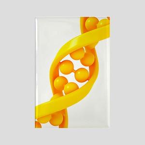 DNA molecule, artwork Rectangle Magnet