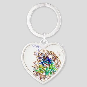 DNA nucleosome, molecular model Heart Keychain