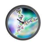 Dna Wall Clocks