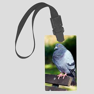 Rock pigeon Large Luggage Tag