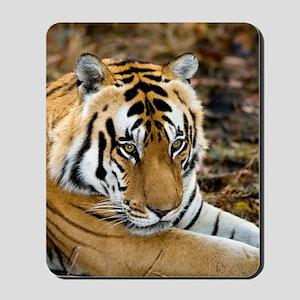Royal bengal tiger Mousepad