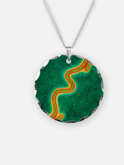Ebola virus Necklace Circle Charm
