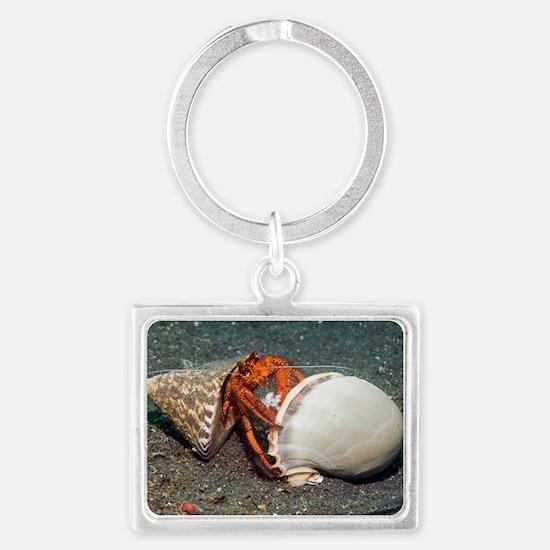 Scarlet hermit crab Landscape Keychain