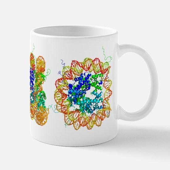 DNA nucleosome, molecular model Mug