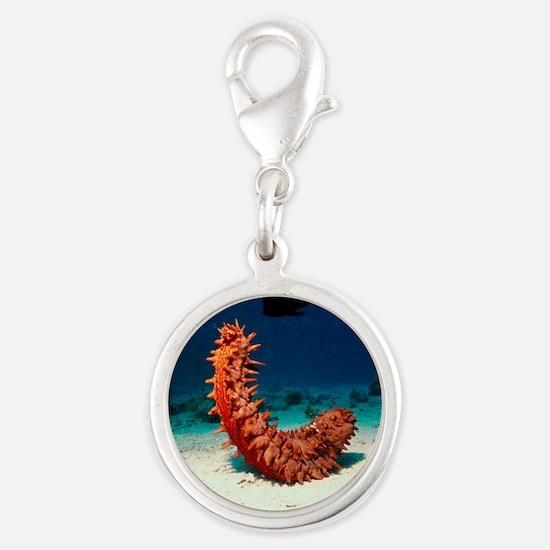 Sea cucumber Silver Round Charm