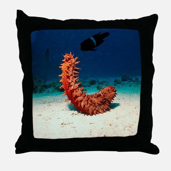 Sea cucumber Throw Pillow
