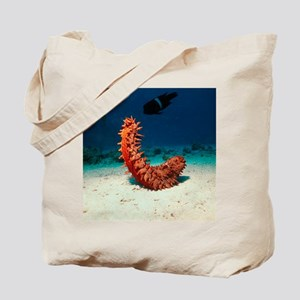 Sea cucumber Tote Bag
