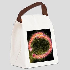 Ebola virus particles, TEM Canvas Lunch Bag
