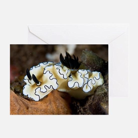 Sea slug Greeting Card