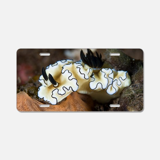 Sea slug Aluminum License Plate