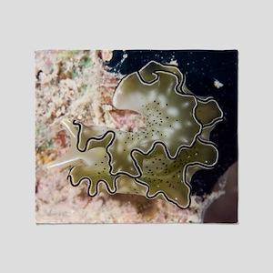 Sea slug (Elysia ornata) Throw Blanket