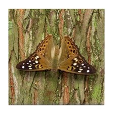 Butterfly : Hackberry Emperor Tile Coaster